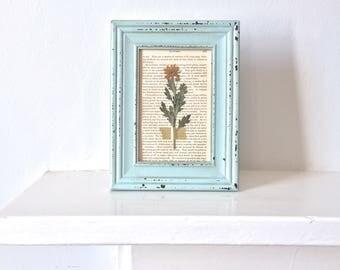 framed pressed flowers on antique book page - mint + orange
