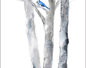 Blue Jay Watercolor Painting, Blue Bird Painting, Bird in a Tree, Birch Tree Watercolor, Grey Black White, Bird Illustration, Minimalist Art