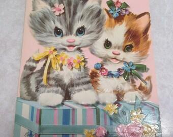 Coby kitten card