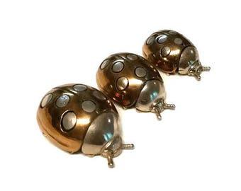 Pietro Sorini and Ilario Casi Silver Miniature Ladybugs