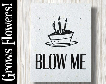 """GROWS WILDFLOWERS! - """"Blow Me"""" - Plant the Card - 100% recycled - #BD004"""