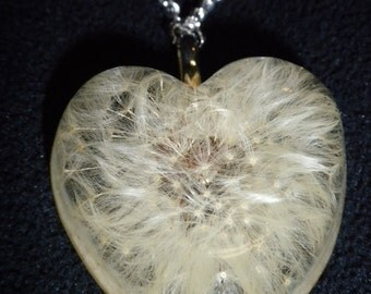 Dandelion Wishing Necklace!  Beautiful whole Dandelion embedded in a sea of Resin!  Send a loved one a heart full of wishes!