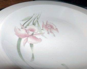 Mid-century (c.1950s) CP Colditz B83 rimmed soup | salad | cereal bowl Colditz Porzellan. Made in Germany.