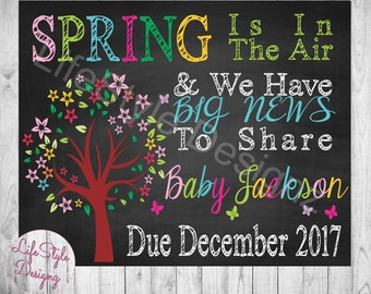 Spring Is In The Air - Chalkboard Pregnancy Announcement -Baby Reveal - Were Expecting - Maternity Photo Prop - Big News - Printable