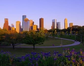 Houston Skyline Canvas, Texas Wall Art, Bluebonnet Gallery Wall Print, Sunset Architecture Decor, Spring Landscape Picture,