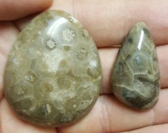 Petoskey stone cab pair