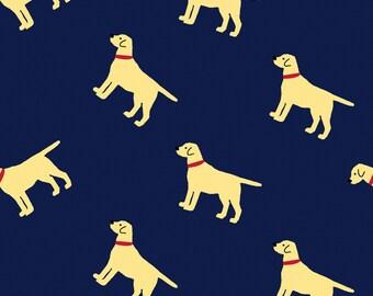 Navy Labrador Dogs