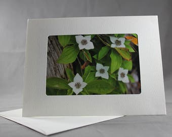 White Flowers Greeting Card with Blank Inside and Envelope Included