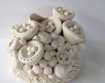 Birdie fungi