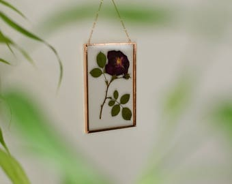 "Real pressed flower wall hanging | rose | 4x6"" glass with copper edging 