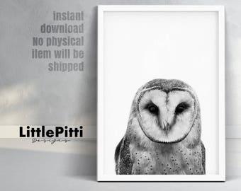 Woodlands nursery, owl art print, bird print, owl gift, owl nursery art, owl print nursery, owl photo, 18x24, 11x14, large modern print