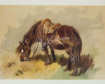 mammals-05088 - Horse with saddle black eating grass by Archibald Thorburn vintage printable high resolution image picture print book page