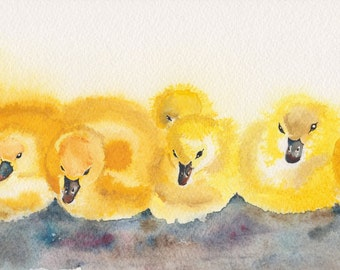 """Ducklings in a row.. Original Watercolour Pen and Ink 12"""" x 4"""" Print Signed and Dated"""