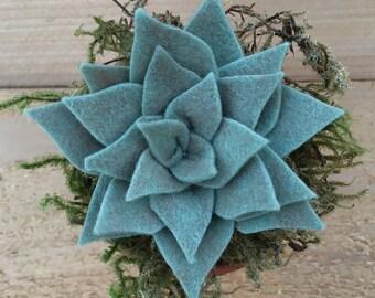Felt Succulent / Faux succulent / Felt Plant / Potted Felt Succulent