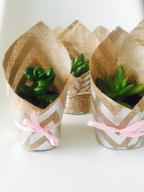 Baby Gifts Queensland : Fat cat pots