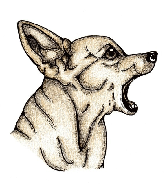 Original Coloured Illustration of a Barking Chihauhau Dog, Clipart, Card Making, Embellishments, Scrapbooking, Crafts