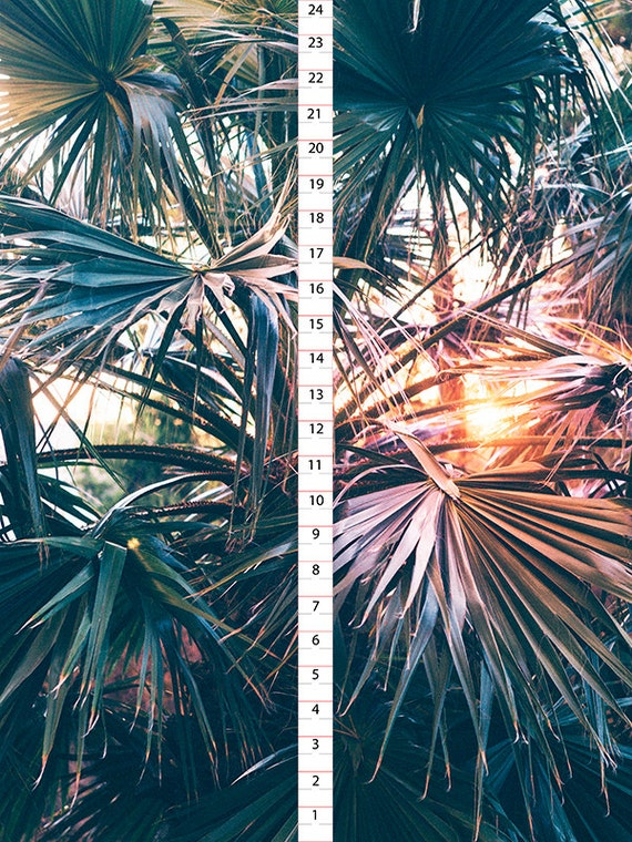 sunset palm tree wrapping paper boho gift wrapping boho wrapping paper gift wrapping palm