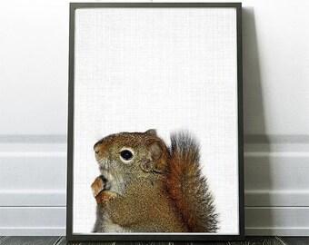 Squirrel Print, Squirrel Art, Woodland Wall Art, Woodland  Decor, Nursery Poster Art, Home Decor, Kids Wall Art, Kids Room Art, Nature Print