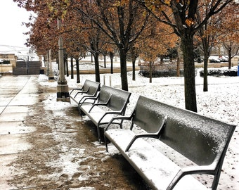 Benches covered in Snow, Chicago Winter, Winter Wonderland, Millennium Park, Chicago Photography, Chicago Wall Art, Chicago Prints