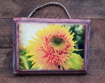 Sunflower, Farm, Flower, Country, Wood Plaque, Photograph, Wall Decor
