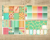 Down in Africa Weekly Kit for Erin Condren Vertical LifePlanner