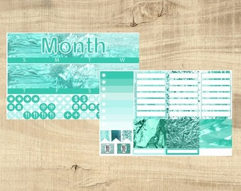 Erin Condren Vertical Monthly Kit - Mint Madness - Any Month!