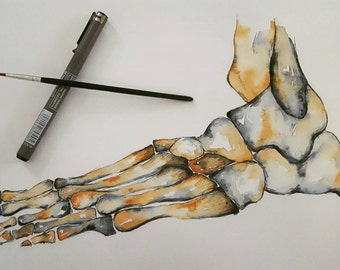 Watercolour Anatomy Art- Extra Large Hand OR Foot