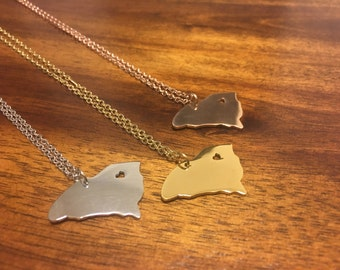 South Carolina Necklace - South Carolina Pendant - South Carolina Jewelry - South Carolina Charm - South Carolina