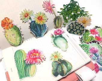 18 Pcs Cactus Sticker, Succulent Sticker Flakes, Potted Plants Filofax Stickers, Cacti stickers, Cactus Flower Sticker, Plant Sticker,Desert