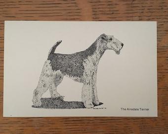 Airedale Terrier vintage postcard