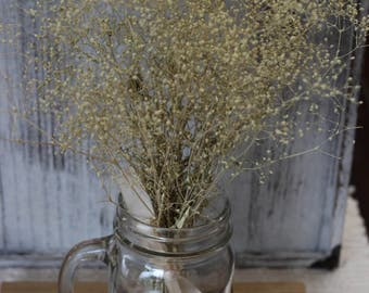 Cream Dried Baby breath Bunch, Dried Flowers Supplies