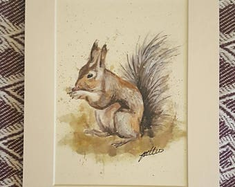 Woodland squirrel  - fine art print, mounted and framed