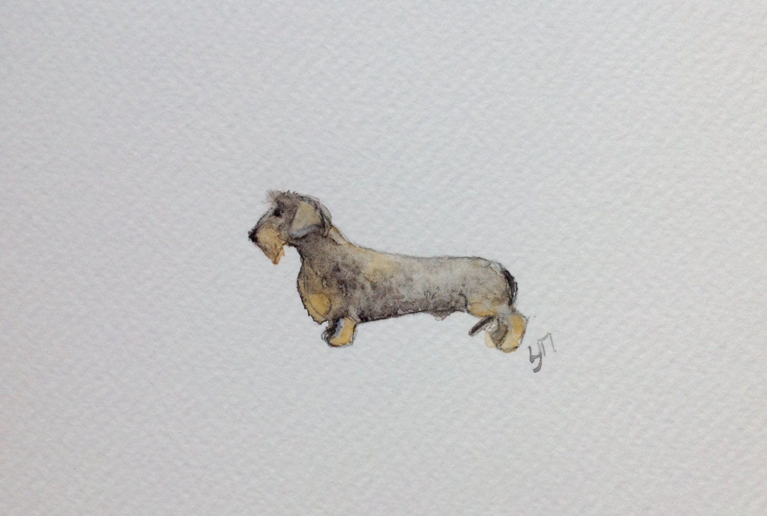 Wirehaired Dachshund greeting card 6 x 4 cm