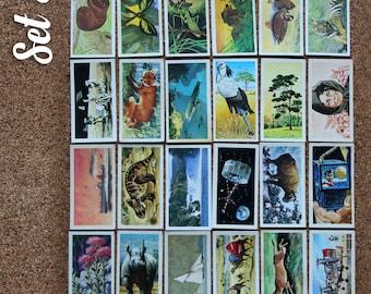 Britain Brooke Bond Tea Cards Collectors Mixed Set of 24 (Set 6 - 10)