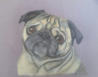Custom pet portrait/animal drawing/ photo to drawing/colors/ memorial pet/ gift idea
