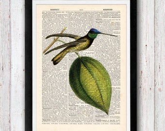 Hummingbird Print Dictionary Art Print Bird Dictionary Art Print Flower Art Wall Art Vintage Dictionary Page Book Art Print