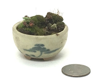 A Vintage small planter - Made in Japan - A miniature zen garden - 1970s- Pine tree