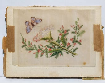 Beautiful Highly detailed Antique Original floral drawing- Coloured pencil/paint. circ 1890-1910 pinks with blue butterfly