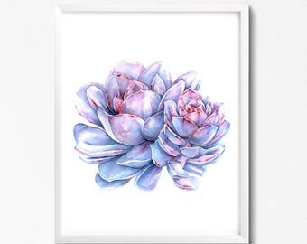 Watercolor succulent, botanical art, digital print, printable art, watercolor print, Succulent Wall Art, Succulent Poster, Home decor