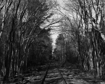 Railroad Black and White