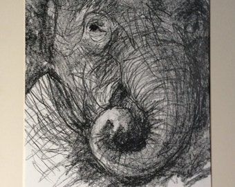 Elephant Graphite on Paper Shetch in Mount 10x12""
