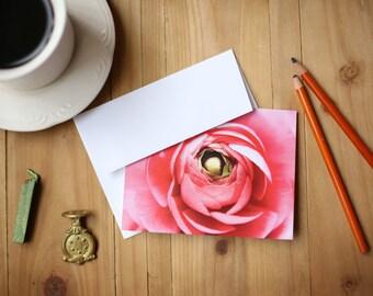 Flower/Nature Photograph Card Set of 8