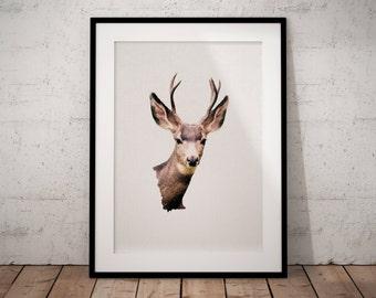 Deer Head Print, Deer Head Art, Deer Head Poster, Printable Deer Head, Deer Head Decor, Deer Head Art Print, Deer Print, Deer Head Wall Art