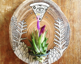 the EYE of THE PIZZA illustrated air plant holder
