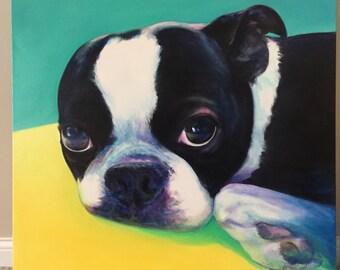 Loving Eyes - oil painting boston bull terrier portrait