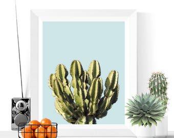 Cactus Printable   Succulent Print   Blue   Desert Art   Art Printable   Modern Art   Cactus Photograph   Plant Printable