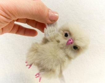 Miniature owlet Frey