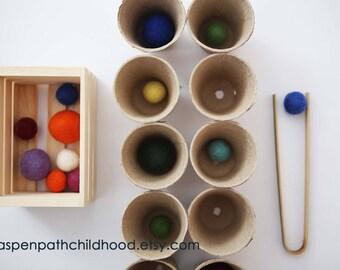 Montessori Sorting Counting Matching Garden Tonging Transfer Set