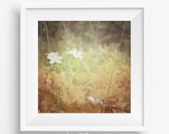 Flower photography - printable picture - white flowers - pastel photography - nature photography - yellow photography - bohemian bedroom