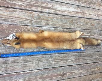 Beautiful XXLG. RED FOX Soft Tanned Fur/Skin/Hide/Hunting Lodge/Taxidermy # 830c